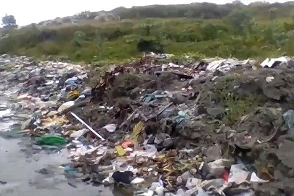 ゴミ山。緑に覆われた部分も、下はゴミが堆積しています。