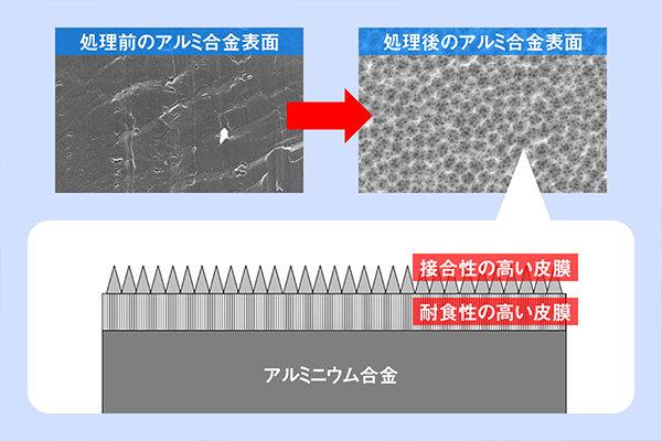 上の左が処理前、右が処理後。下はその模式図。金属表面を耐食性の高い皮膜が覆い、その上にトゲのような皮膜が形成されます。