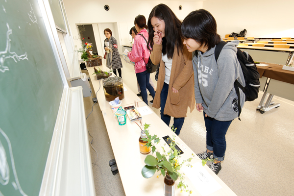 葉っぱや枝、木の実など自然由来のものを使ったアートやミニ盆栽などの作品展。癒しの空間が広がっていました。<緑地保全学研究室>