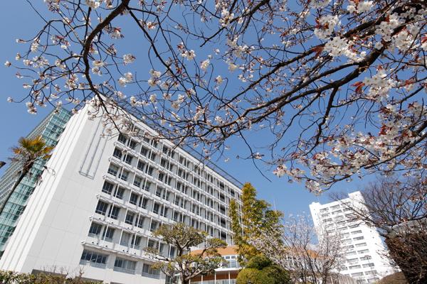 講義棟「三宅の森 Nexus21」前の桜は、ようやくつぼみが開きかけたところ。雲ひとつない青空とともに新入生を迎えます。