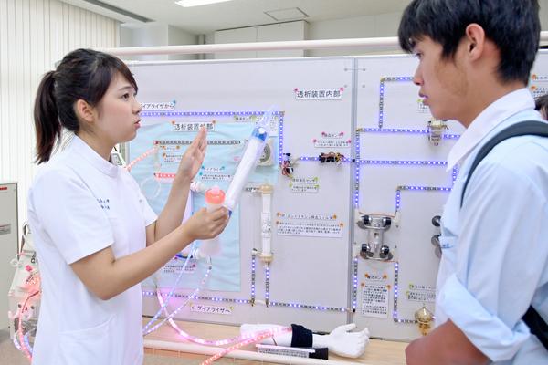 こちらは人工透析の際に使用するダイアライザを組み立てている様子。ダイアライザとは血液中の不要な老廃物や水分を濾過するための装置のことです。