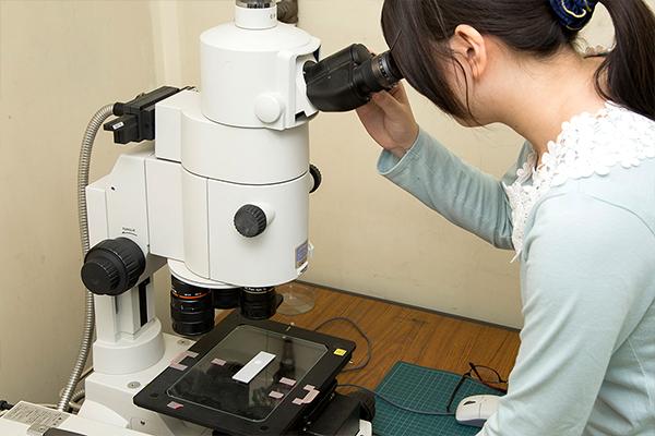 処理を施した後の試験片を光学顕微鏡で見て、表面の状態を調べます。表面を拡大すると、陽極酸化処理によってどう変化したかが詳細にわかります。
