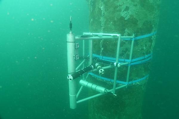 橋脚の基礎杭の1本に測定機器を装着。上げ潮・下げ潮時の流速などを測定しました。10m、17mと深さも変え、浅い地点と深い地点の違いも検証しました。