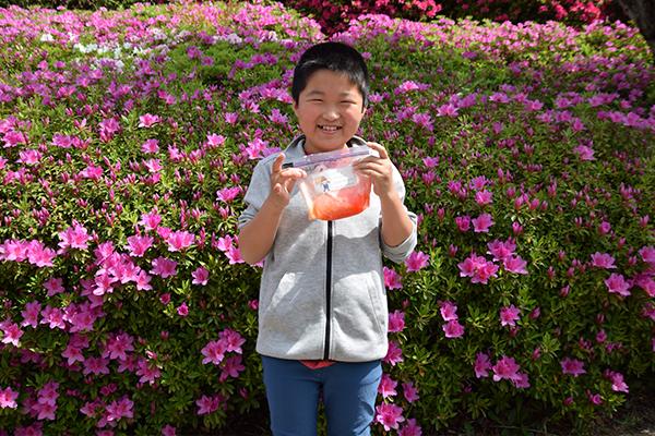 参加した新升健生くん(4年生)に感想を聞くと「初めてつくったけど、ぷよぷよで変な手触り。でも面白い」と笑顔で答えてくれました。