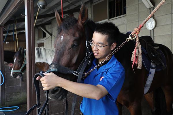 馬術練習に向けて馬装の取り付け。馬の個性によって取り付け方が違うのだとか。